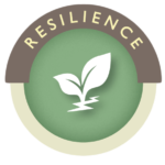 resilience-transparent