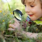 12 Ways to Foster Curiosity