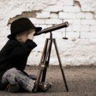 A Bainbridge Curiosity Project