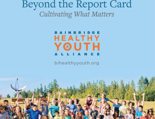 2017 Alliance for Youth Publication